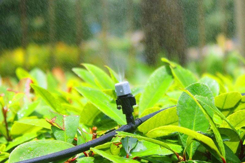 Drip Irrigation Fogger Mister dealer siliguri