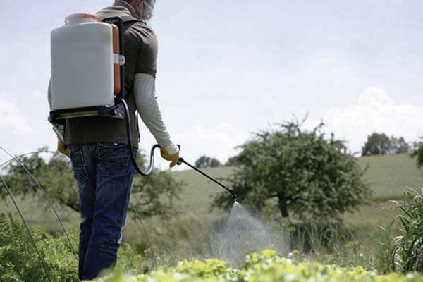 Manual Sprayer dealer siliguri