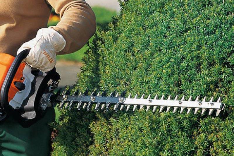 Hedge Trimmer dealer siliguri